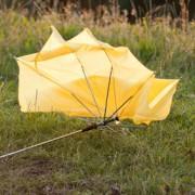 zerstörter Regenschirm auf einer Wiese