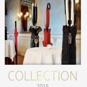 Titelseite deines Regenschirme Katalogs
