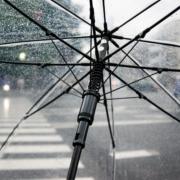 transparenter Bezug eines Regenschirms